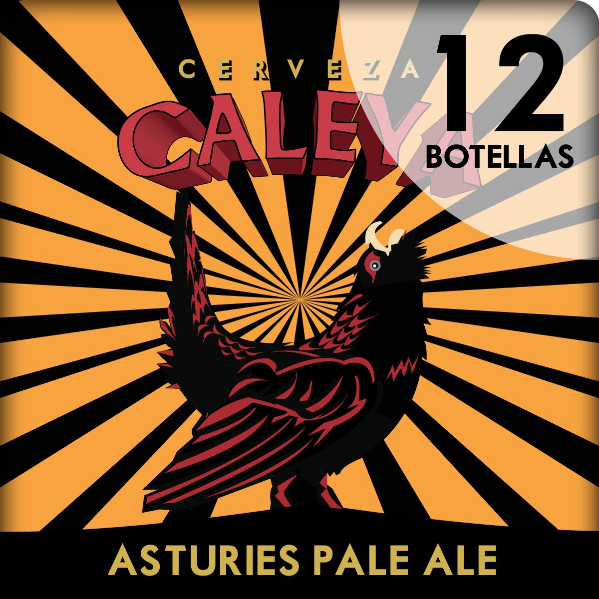 Caja de 12 botellas de Asturies Pale Ale