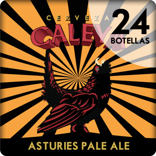 Caja de 24 botellas de Asturies Pale Ale